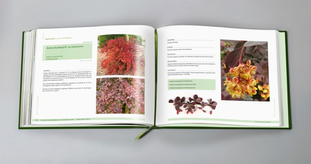Veta Visual, pàgines interiors del llibre «Guia de la flora ornamental de la Universitat Jaume I»
